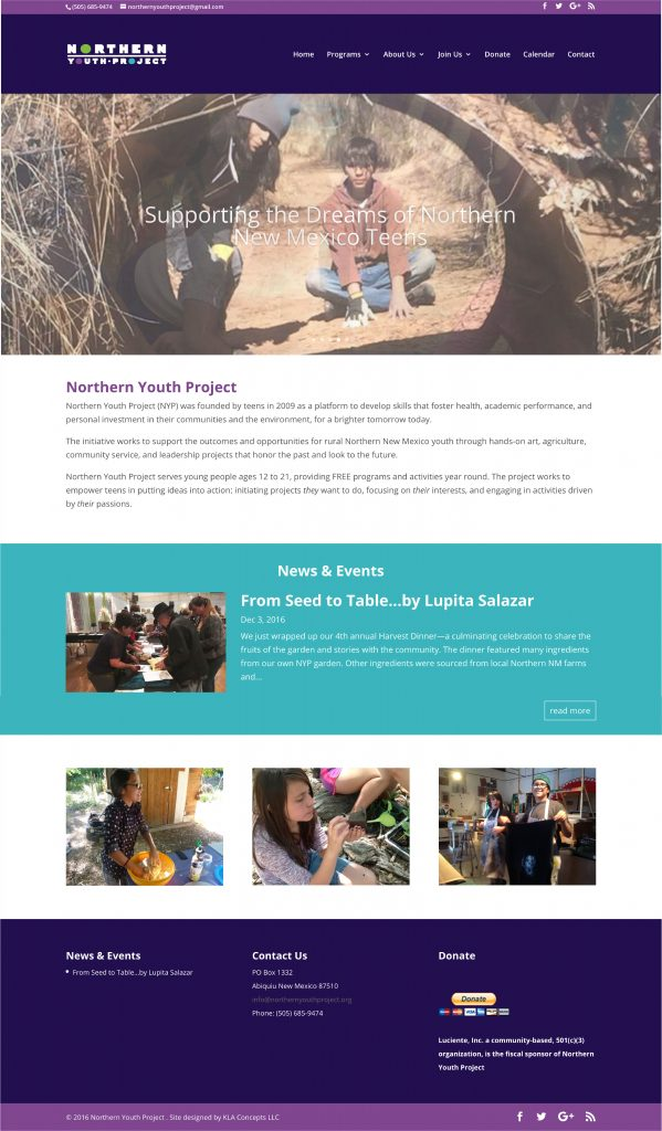 Northern Youth Project Website
